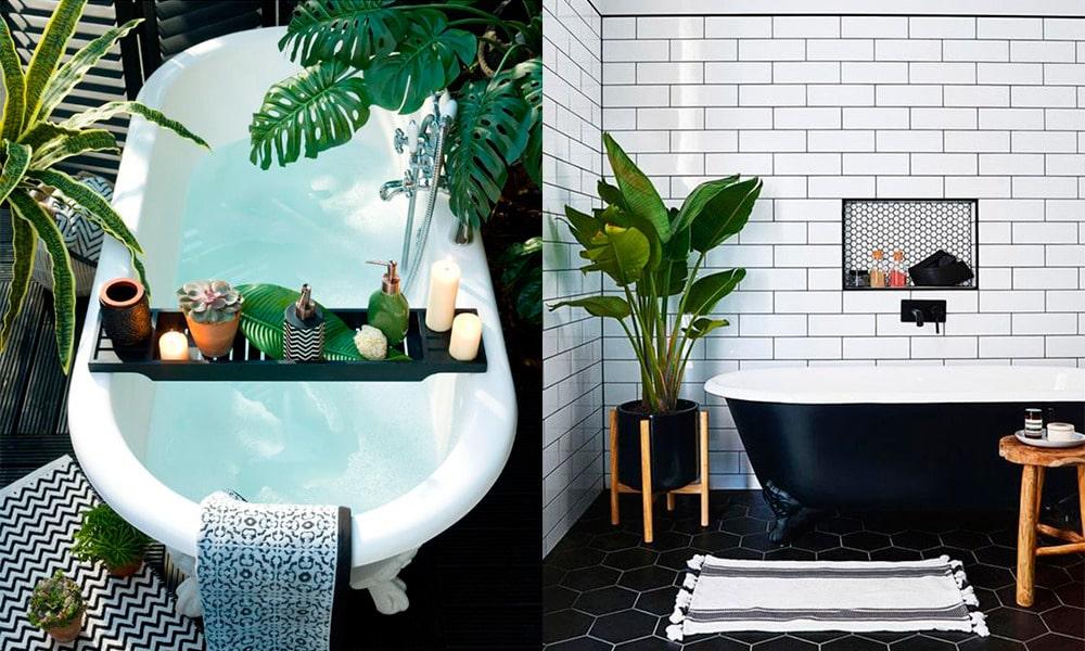 Decorar el baño con plantas