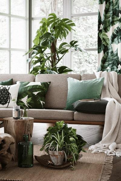 Combinar decoración con plantas